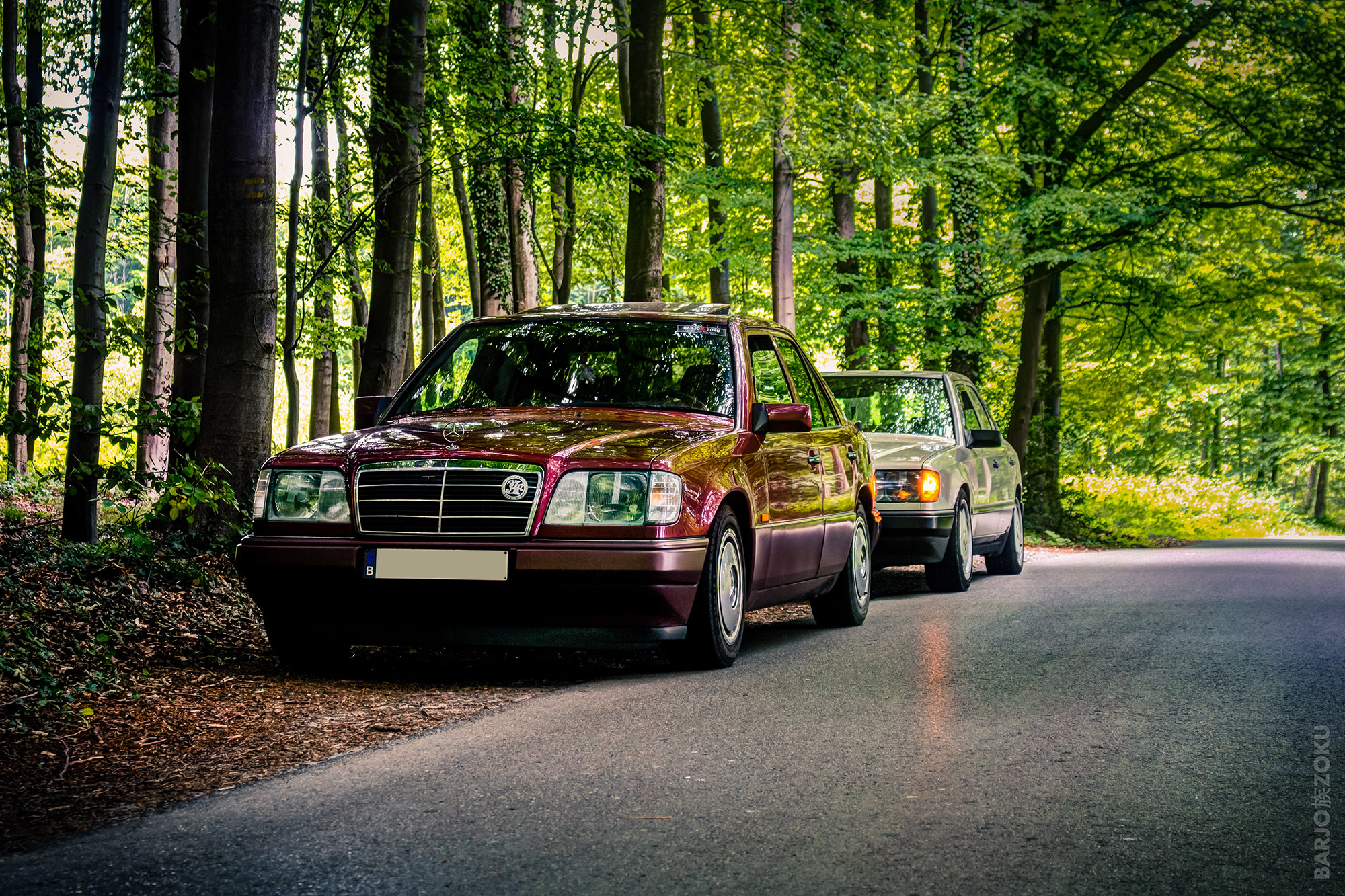 Mercedes W124 2.5D dans les bois